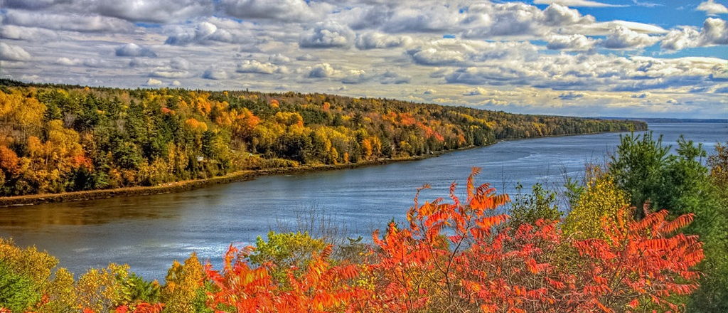 Settlement proposed to clean up mercury in the Penobscot River